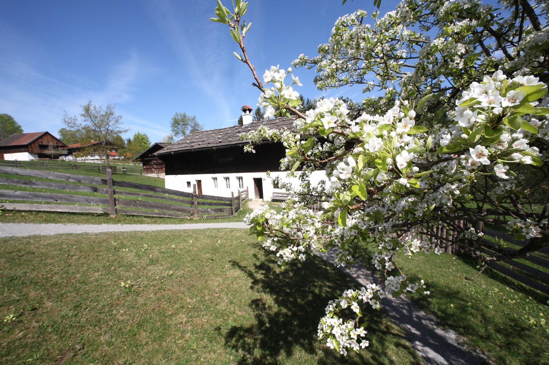 Freilichtmuseum Glentleiten - ZugspitzCard - günstiger